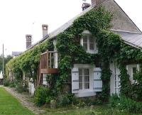 couverture vegetale maison