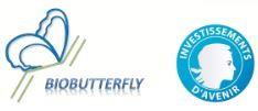 Projet BioButterfly