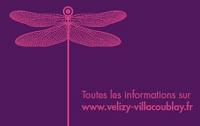 Ville biometrique Velizy