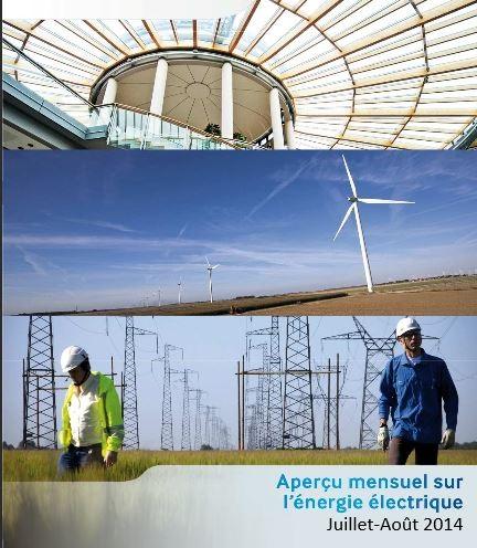 rte rapport électricité été 2014