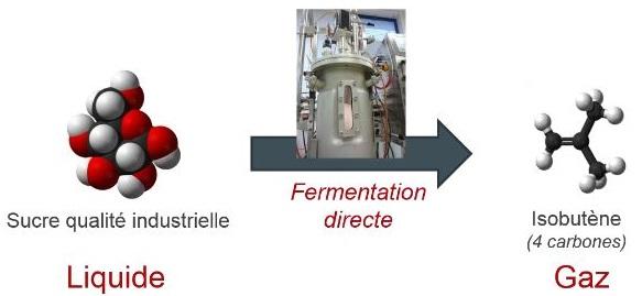 bioenergies 2