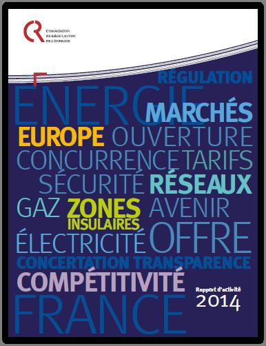 rapport d'activités CRE 2014