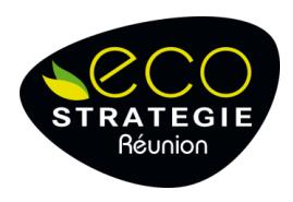 logo eco stratégie réunion