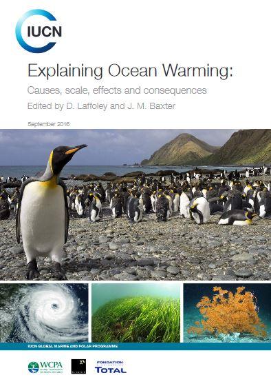 image pour Les conséquences dramatiques du réchauffement des océans