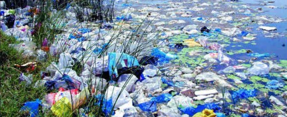 pollution par les sacs plastiques