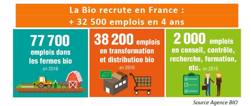 le bio recrute en France : +32500 emplois en 4 ans