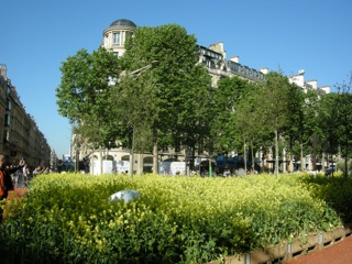 champs elysees nature capitale