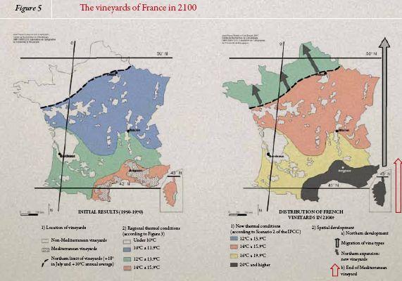 Evolution vignes en France