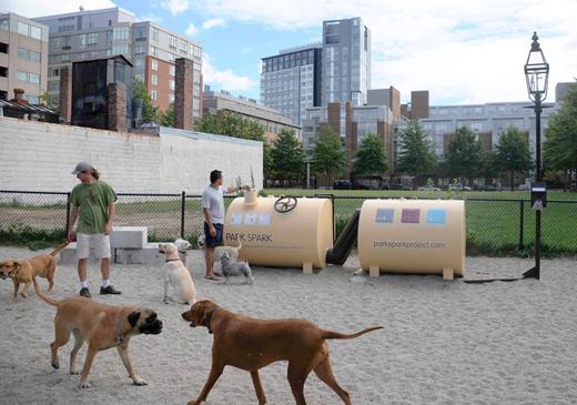 recyclage des dejectiosn canines