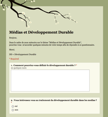 Questionnaire Developpement Durable