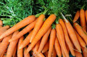 Des carottes pour le béton