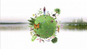 Rapport de l'IFBES sur la biodiversité