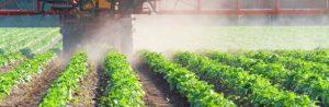 risques cumulés des pesticides
