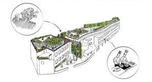 Cueillette Urbaine, un projet de ferme urbaine