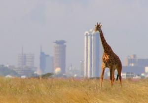 biodiversité : des objectifs contraignants nécessaires