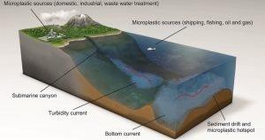 Etude sur les hotspots de microplastiques