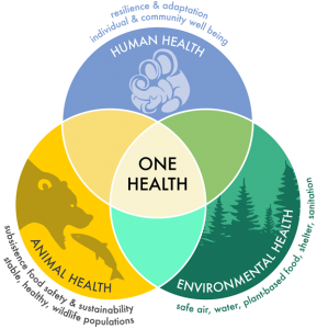 4ème Plan Santé Environnement