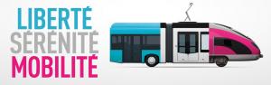 Les transports publics et la mobilité individuelle