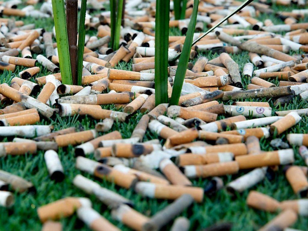 Mégots : le principe pollueur/payeur